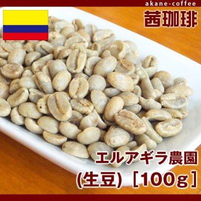 サンチュアリオ農園(生豆)[100g][南米/コロンビア]