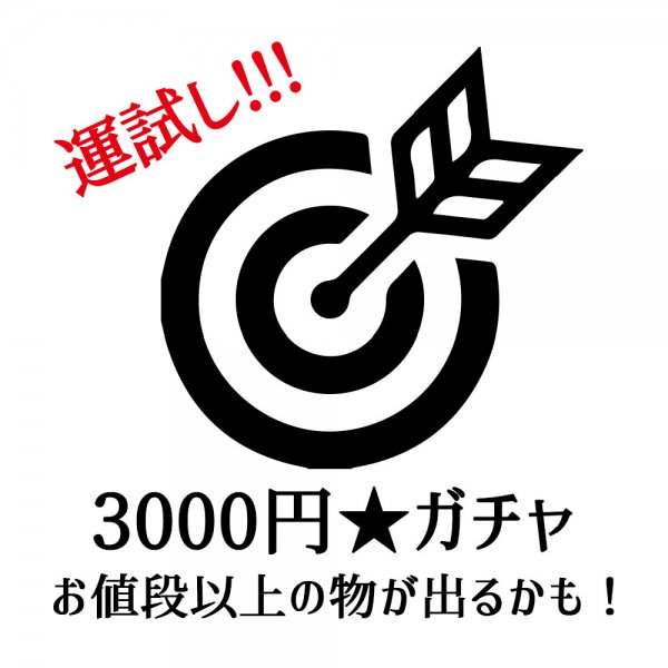 3,000円ガチャ