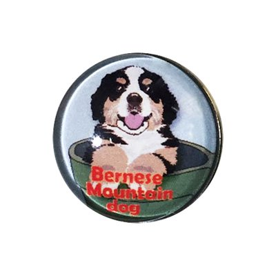 20mmガラスピンバッジ・犬/バーニーズマウンテンドッグ(BL)