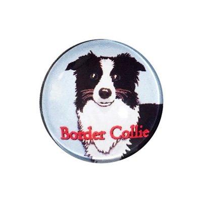 20mmガラスピンバッジ・犬/ボーダーコリー(BL)