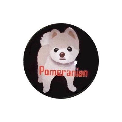 20mmガラスピンバッジ・犬/ポメラニアン(BK)