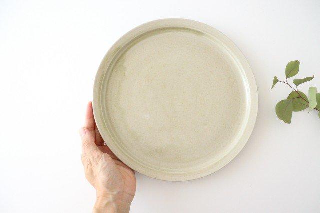 8寸皿 魚沼緑灰 陶器 青人窯 画像2