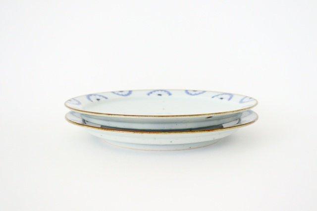 8寸リム皿 菊紋 磁器 皐月窯 砥部焼 画像5