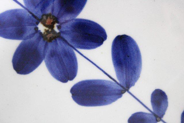 手描き青花 4寸正角皿 磁器 波佐見焼 画像2