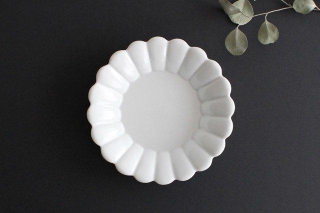 19cm丸皿 白 磁器 キクワリ 波佐見焼