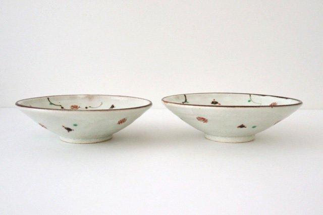 6寸浅鉢 赤絵鉄絵小紋 陶器 南窯 美濃焼 画像4