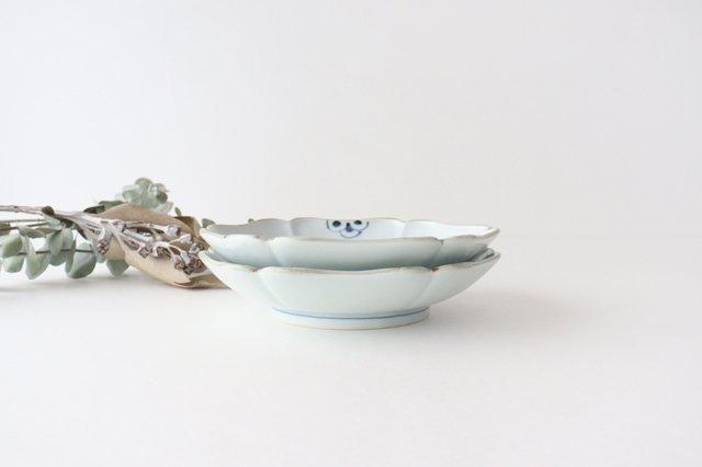 【うちる別注】和皿 菊紋 磁器 染付 有田焼 画像6