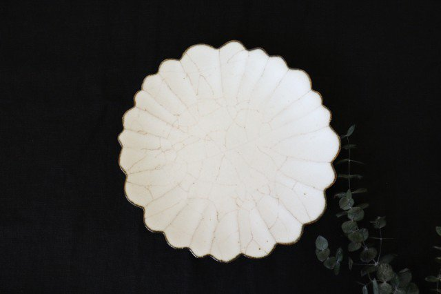 7寸皿 ハナ カンニュウ 陶器 たくまポタリー