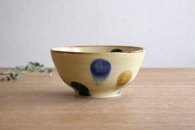 美濃焼 丼 三彩 陶器