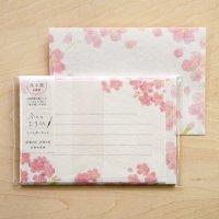 「今日のお手紙」ミニレターセット 桜