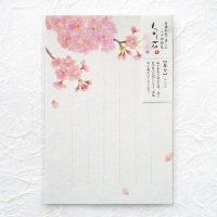 春の季節の はがき 「旬花」 桜