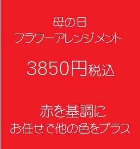 母の日 フラワーアレンジメント 赤 3850円税込