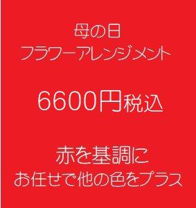 母の日 フラワーアレンジメント 赤 6600円税込
