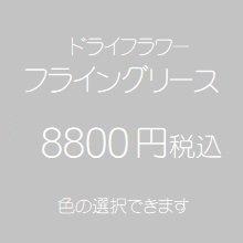 ドライフラワーフライングリース8800円