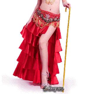 ベリーダンス衣装■スカート コスチューム 服 ステージ 舞台 グッズ 安い 通販 16
