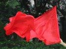 ベリーダンスフランクポイflag poiジャグリング道具224cm x 88cm 1
