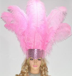 ベリーダンス衣装★羽 髪飾り サンバ 舞台 アクセサリー トライバル グッズ 格安 販売 1