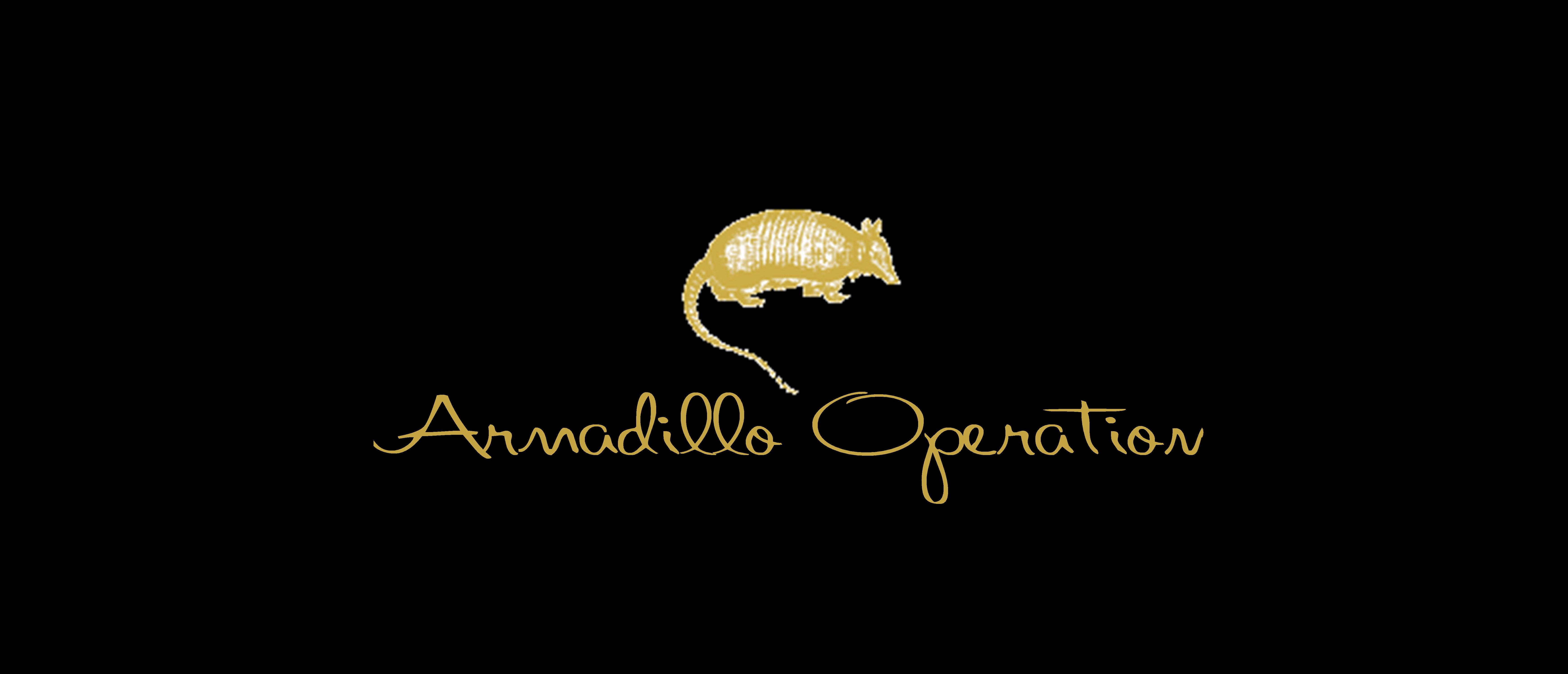 西洋東洋古民具専門Web-Shop Armadillo Operation ー アルマジロ オペレーション ー