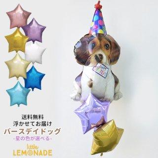 【送料無料】浮かせてお届け バースデイドッグ いぬ&スターのバルーンブーケ 誕生日 ペットのお祝い BIRTHDAY DOG