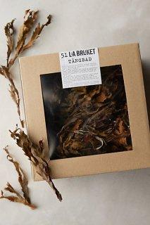 �ڥ���ݥ?���ۡ�Anthropologie��L A Bruket No  51 Seaweed Bath