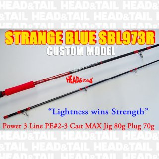STRANGE BLUE SBL973R CUSTOM MODEL