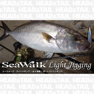<img class='new_mark_img1' src='//img.shop-pro.jp/img/new/icons1.gif' style='border:none;display:inline;margin:0px;padding:0px;width:auto;' />SeaWalk Light Jigging 65M Bait Model