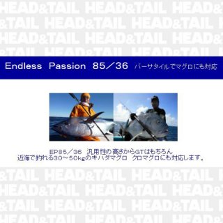 Endress Passion EP85/36