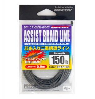 アシストブレイドライン DIY-10