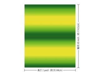 黄色と緑のハワイアンファ...