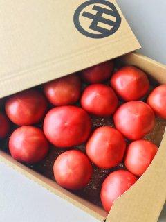 MARUMO完熟無農薬トマト