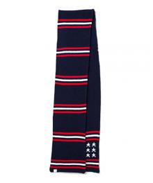 <img class='new_mark_img1' src='https://img.shop-pro.jp/img/new/icons34.gif' style='border:none;display:inline;margin:0px;padding:0px;width:auto;' />DELUXE STARS&STRIPES MUFFLER(NAVY)
