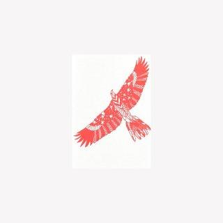 ポストカード  FLY LIKE AN EAGLE  (Red)