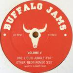Glimmer Twins - Buffalo Jams Volume V