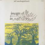 Joel Vandroogenbroek - Images Of Flute In Nature