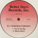 D.J. Extensive Collection - You're Too Big