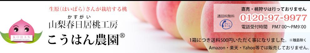 山梨春日居桃工房 こうはん農園|生原(はいばら)さんが栽培する桃