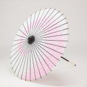 紙傘76cm 花渦 / 白地ピンク