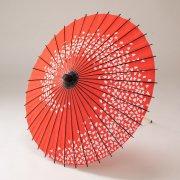 布和傘76cm  花渦 / 赤