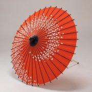 紙傘70cm  花渦 / 赤