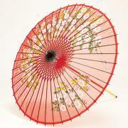 【再入荷】絹傘90cm 桜絵 / 赤