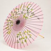 絹傘90cm 桜絵  / ピンク