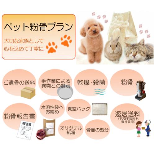 実践!ペットのお骨を自分で粉骨する手順 | 福島県 …