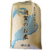 ☆令和2年産☆ 格安プラン 減農薬米 コシヒカリ 玄米 30kg