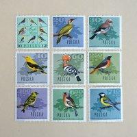 ポーランドの切手<野鳥>