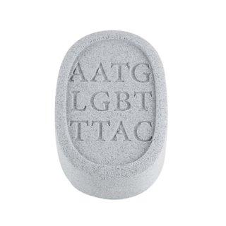 eprience LGBT