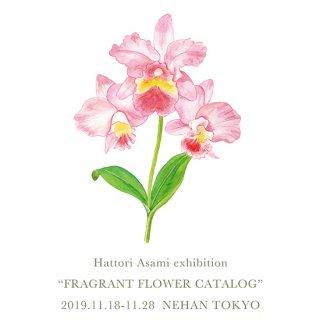 Hattori Asami exhibition