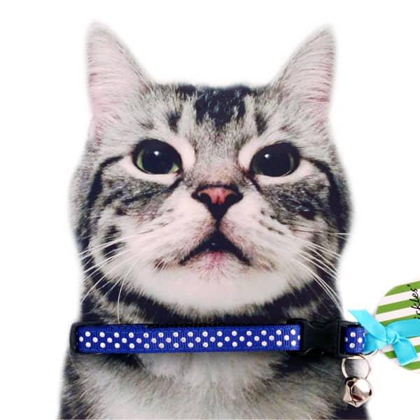 猫の首輪[フューチャー・イズ・ブライト*ブルー]キャットカラー
