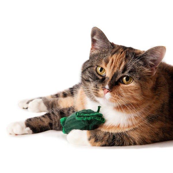猫おもちゃ[ティックル・ガーキンス(2個セット)]けりぐるみ|Tipsy Nip