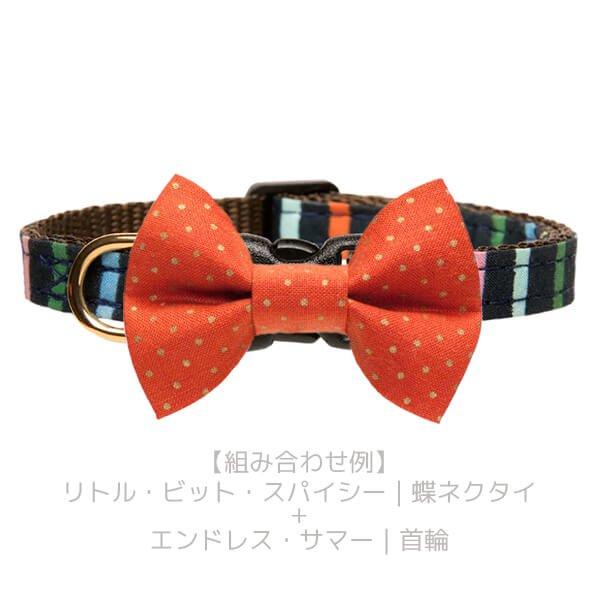 猫の首輪[エンドレス・サマー]キャットカラー