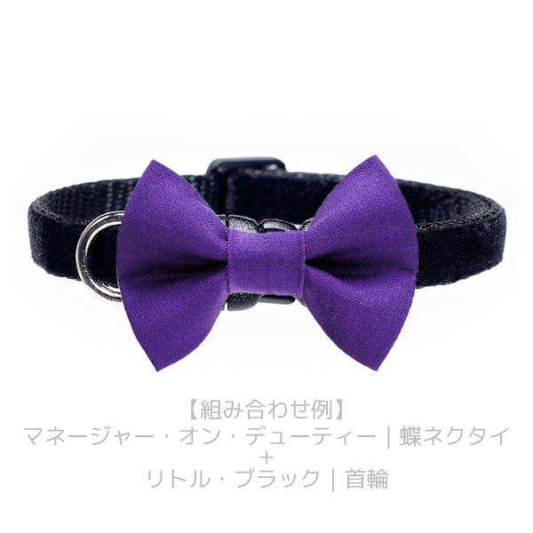 猫の首輪[リトル・ブラック]キャットカラー